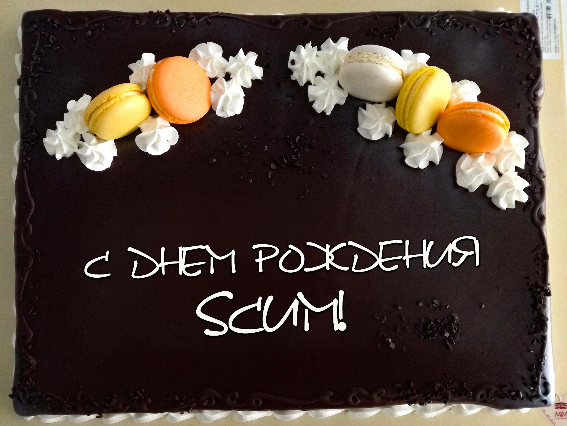 SCUM 0.2.53.16453 1