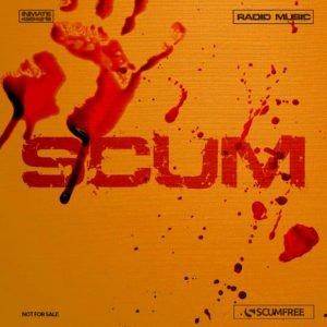 Scum сервер 12